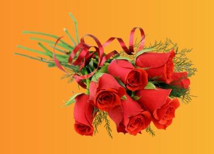 گل لاله قرمز